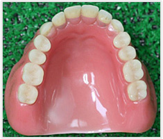 相浦歯科医院 その他の診療 総義歯